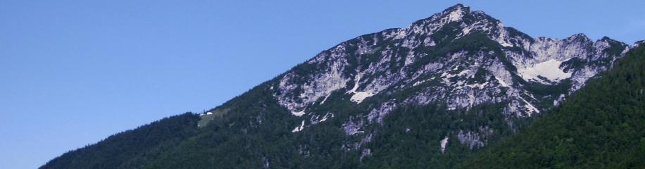 Panorama Zwiesel mit Zwieselalm